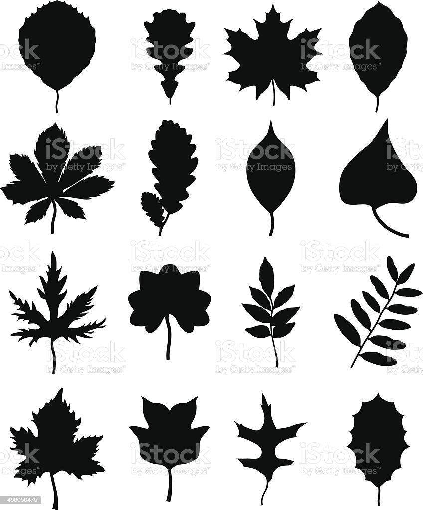 silhouettes of leaves vector art illustration