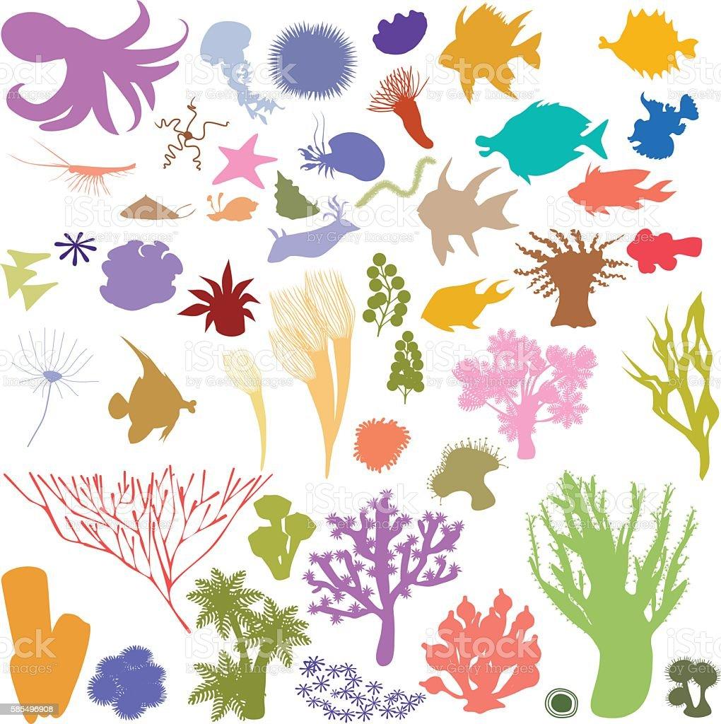 silhouettes of sea animal vector art illustration