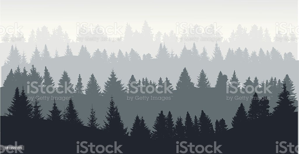 Silhouettes of the forest from dark to light vector art illustration