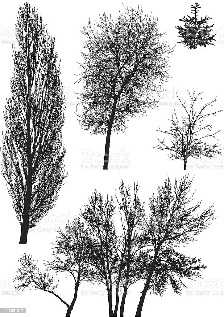 Silhouettes of trees vector royalty-free stock vector art