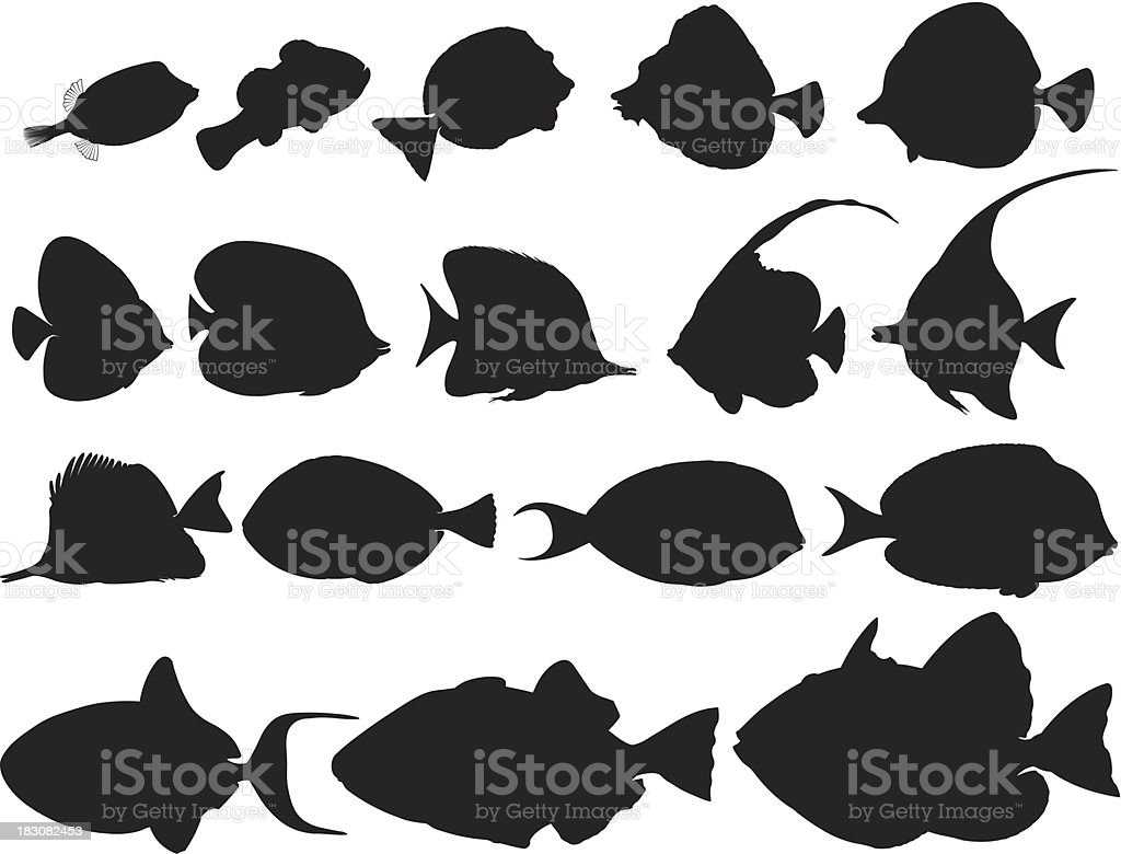 Silhouettes of tropical fishes / Poissons tropicaux ombragés vector art illustration