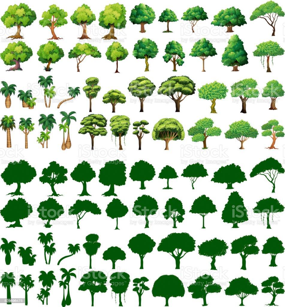 Silhoutte of trees vector art illustration