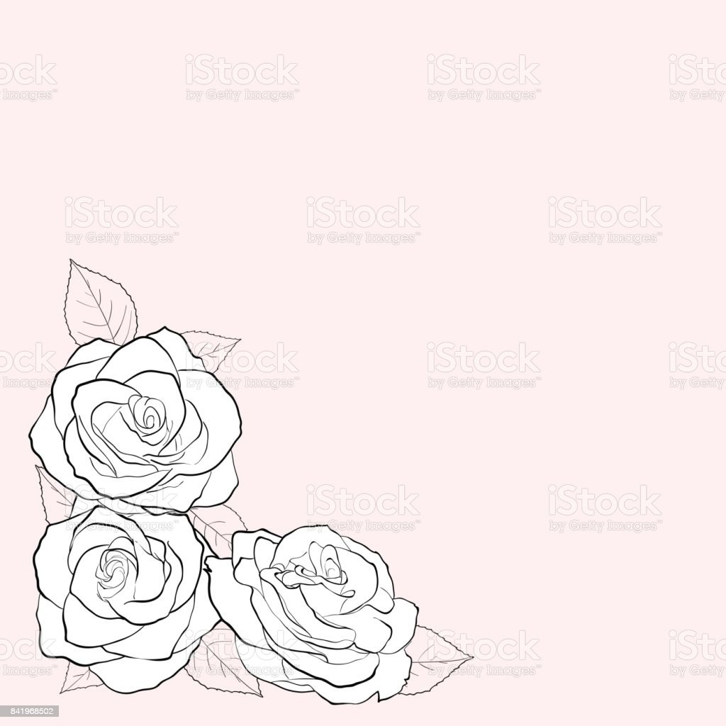 Simple black and white vector illustration of three rose flowers on a background of pastel colors. Greeting card with place for text. vector art illustration