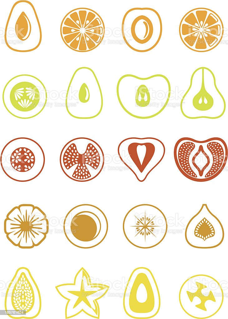 Simple fruit slices. vector art illustration