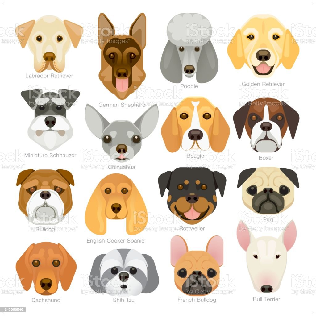 simple graphic popular dog breeds icon set stock vector