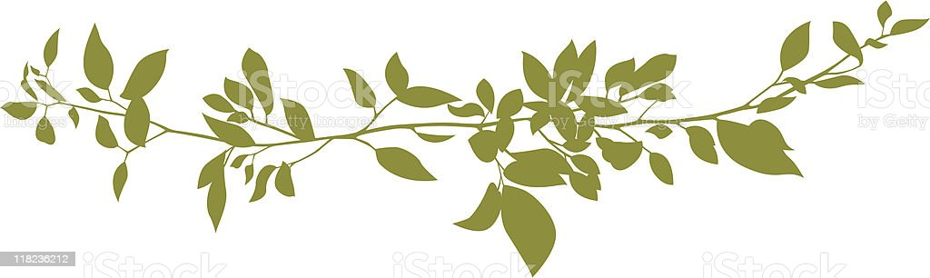 simple green branch vector art illustration