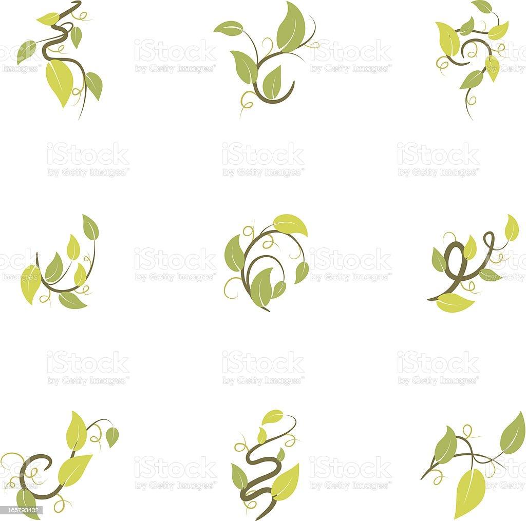 Simple Leaf Vine Icons Set of Nine Isolated on White vector art illustration