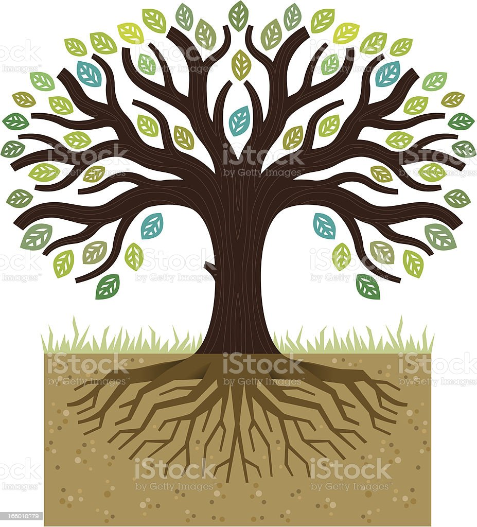 Simple tree roots illustration vector art illustration