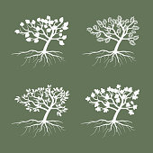 Simple vector trees. Environmental symbol tree illustration icon set