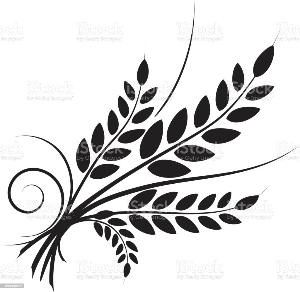 Simple Wheat Icon with swirl designs - black silhouette vector art illustration