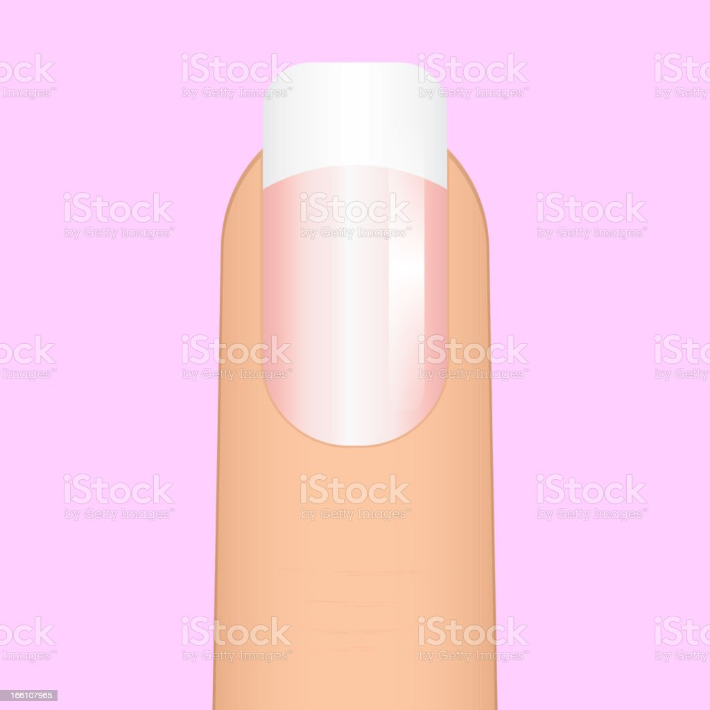 A single nail with a white tip image royalty-free stock vector art
