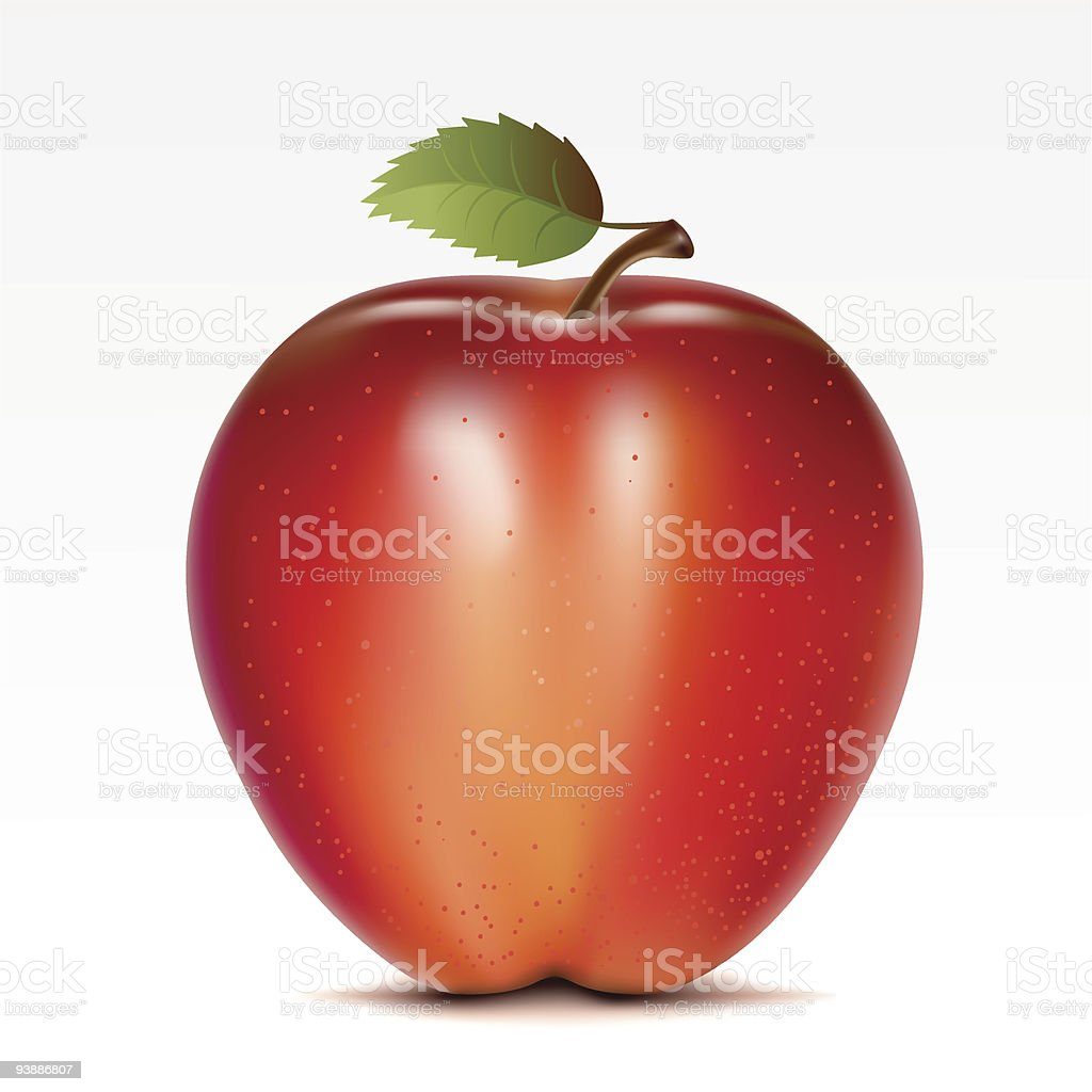 A single red apple on a white background royalty-free stock vector art