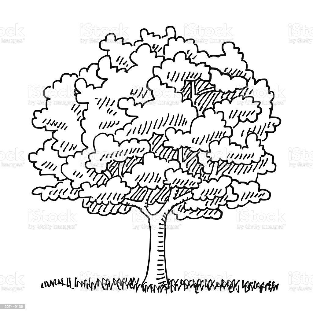 Single Tree Summer Nature Drawing vector art illustration