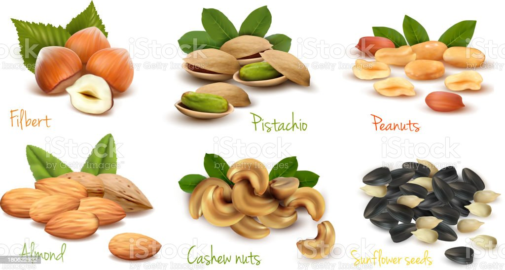 Six piles of different kinds of nuts vector art illustration