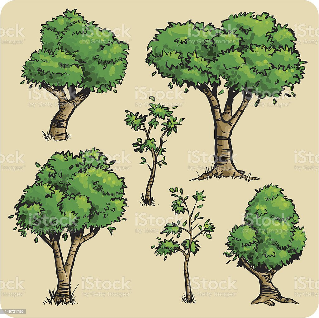 Six Sexy Trees vector art illustration