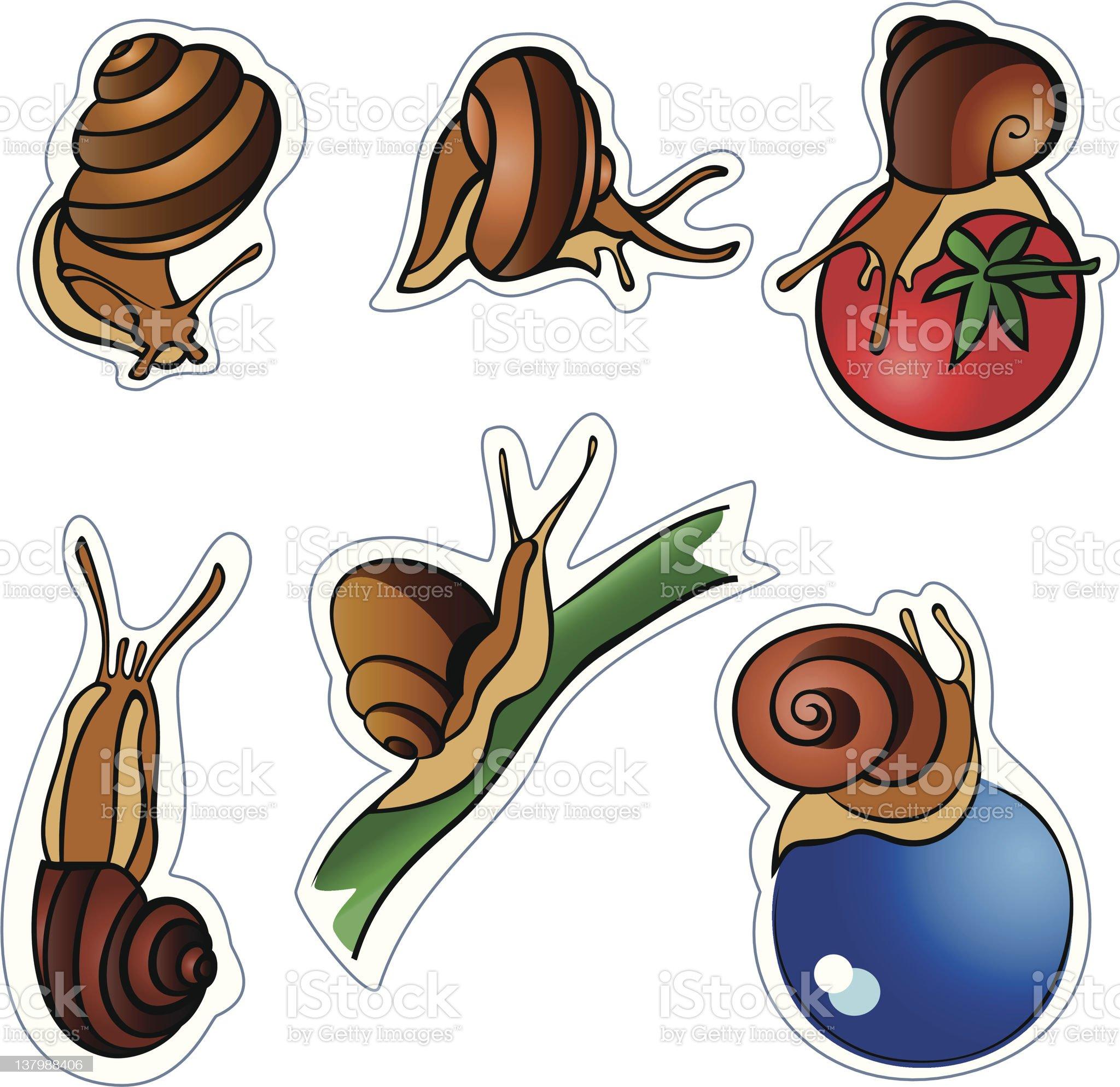 Six slugs royalty-free stock vector art