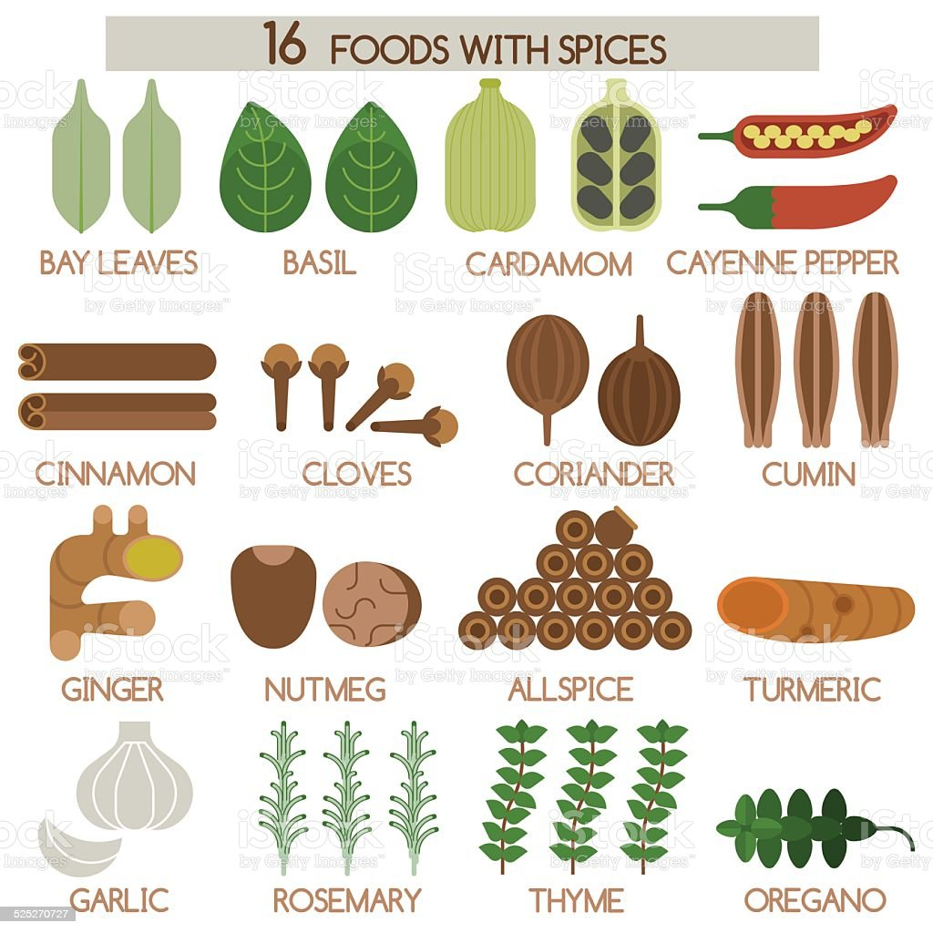 Sixteen foods of spices vector art illustration