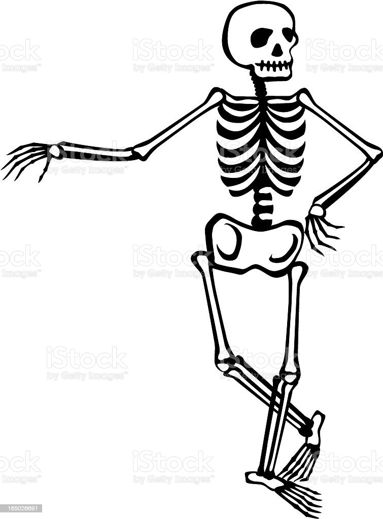 Skeleton - casual vector art illustration