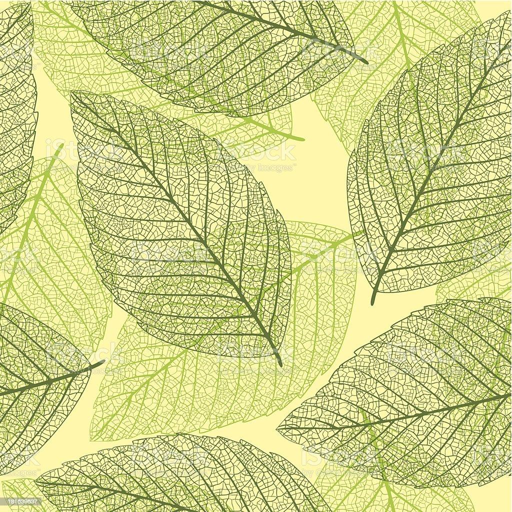 Skeleton leaves. Seamless background royalty-free stock vector art