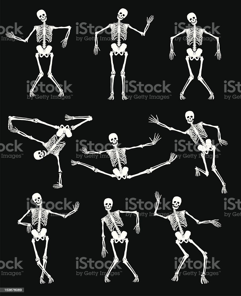 Skeletons royalty-free stock vector art