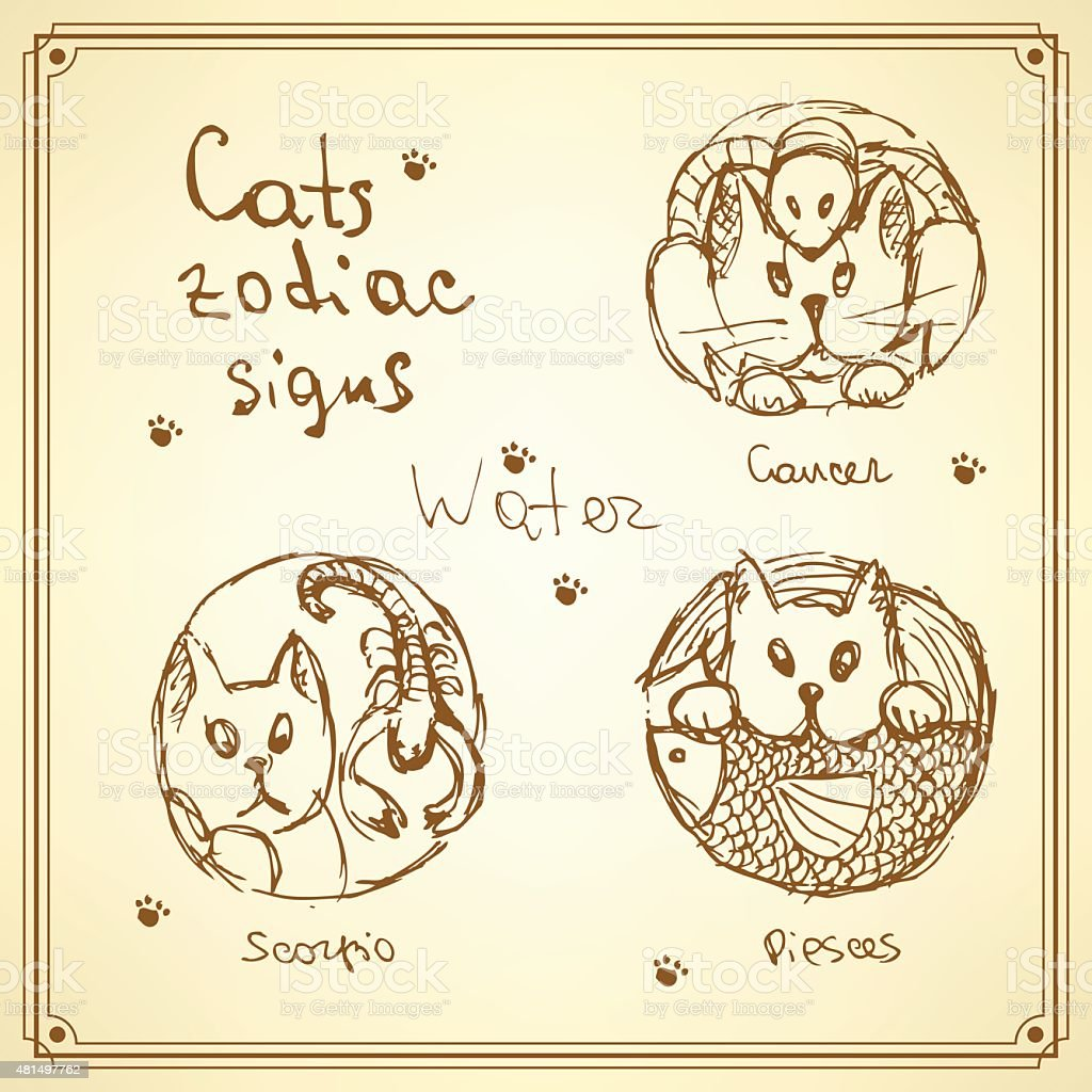 Sketch cats zodiac signs in vintage style vector art illustration