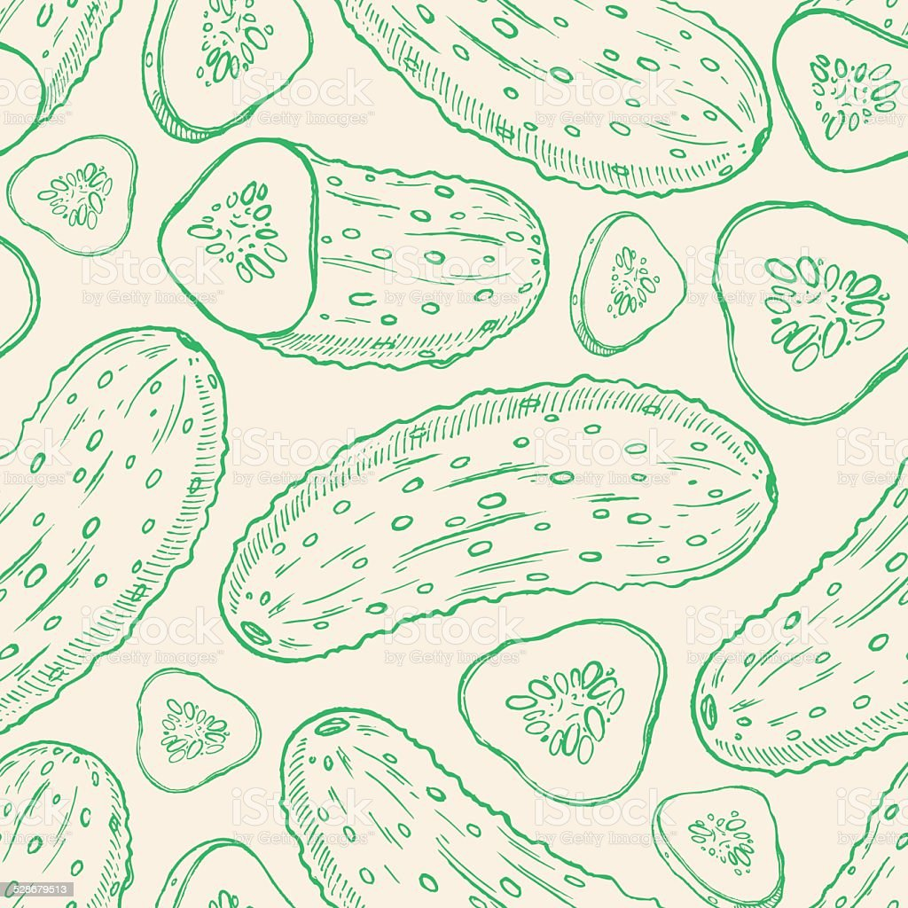 sketch cucumbers vector art illustration