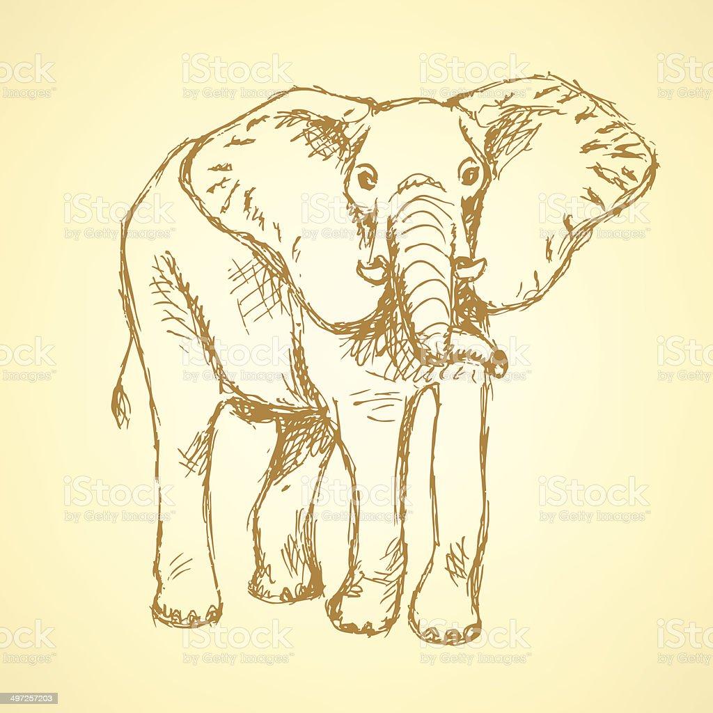 Sketch elepant, vector vintage background royalty-free stock vector art