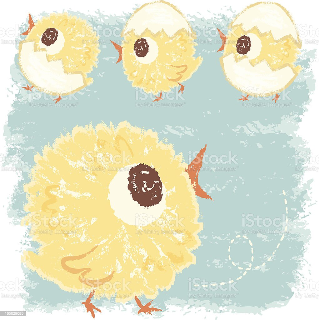 sketch of baby chicken royalty-free stock vector art
