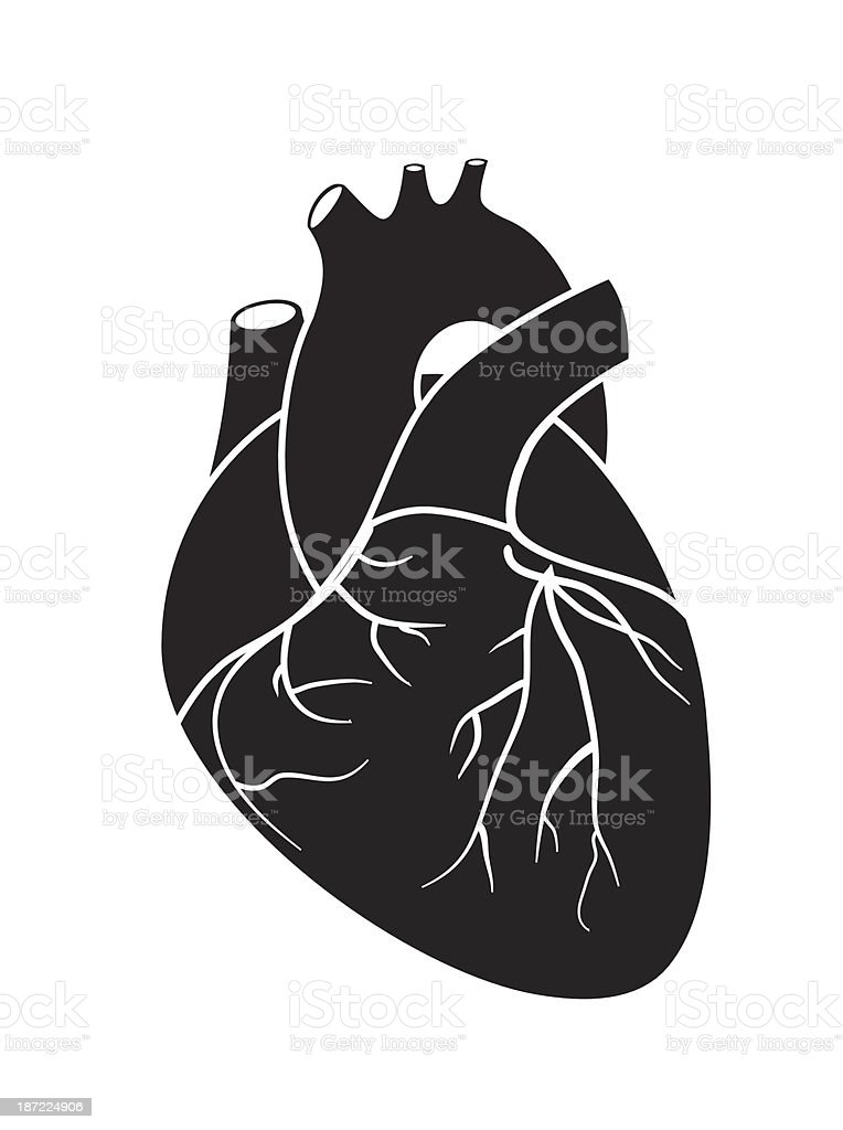 Sketch of black hearth on white background royalty-free stock vector art