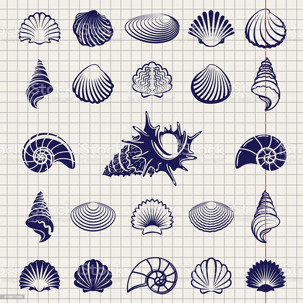 Sketch of sea shells vector art illustration