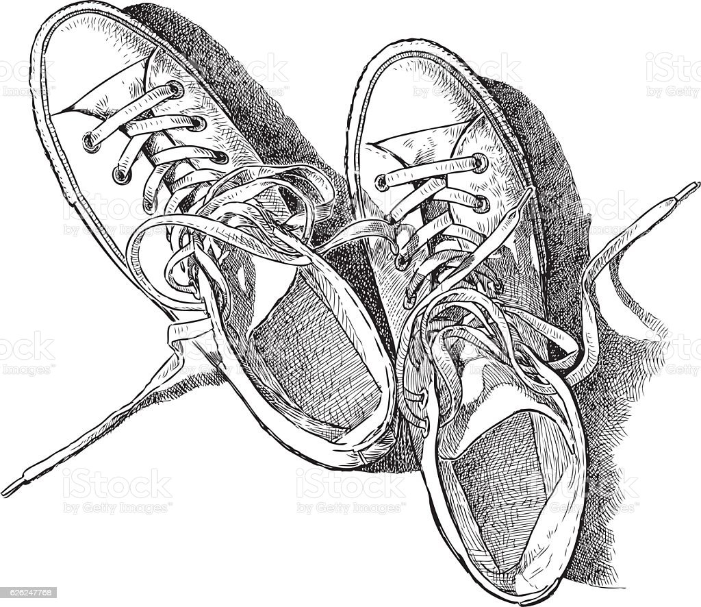 sketch of the sneakers vector art illustration