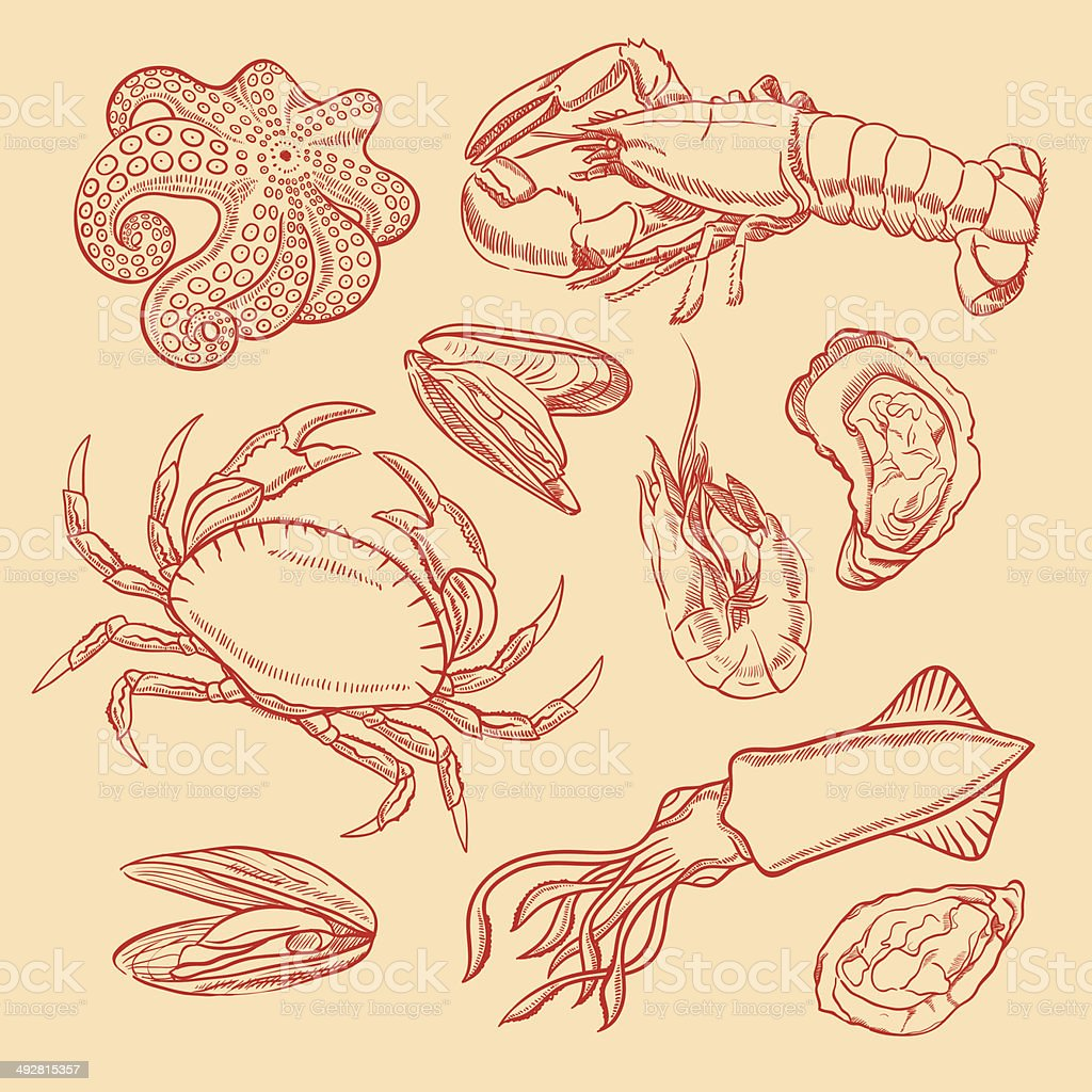 sketch seafood vector art illustration