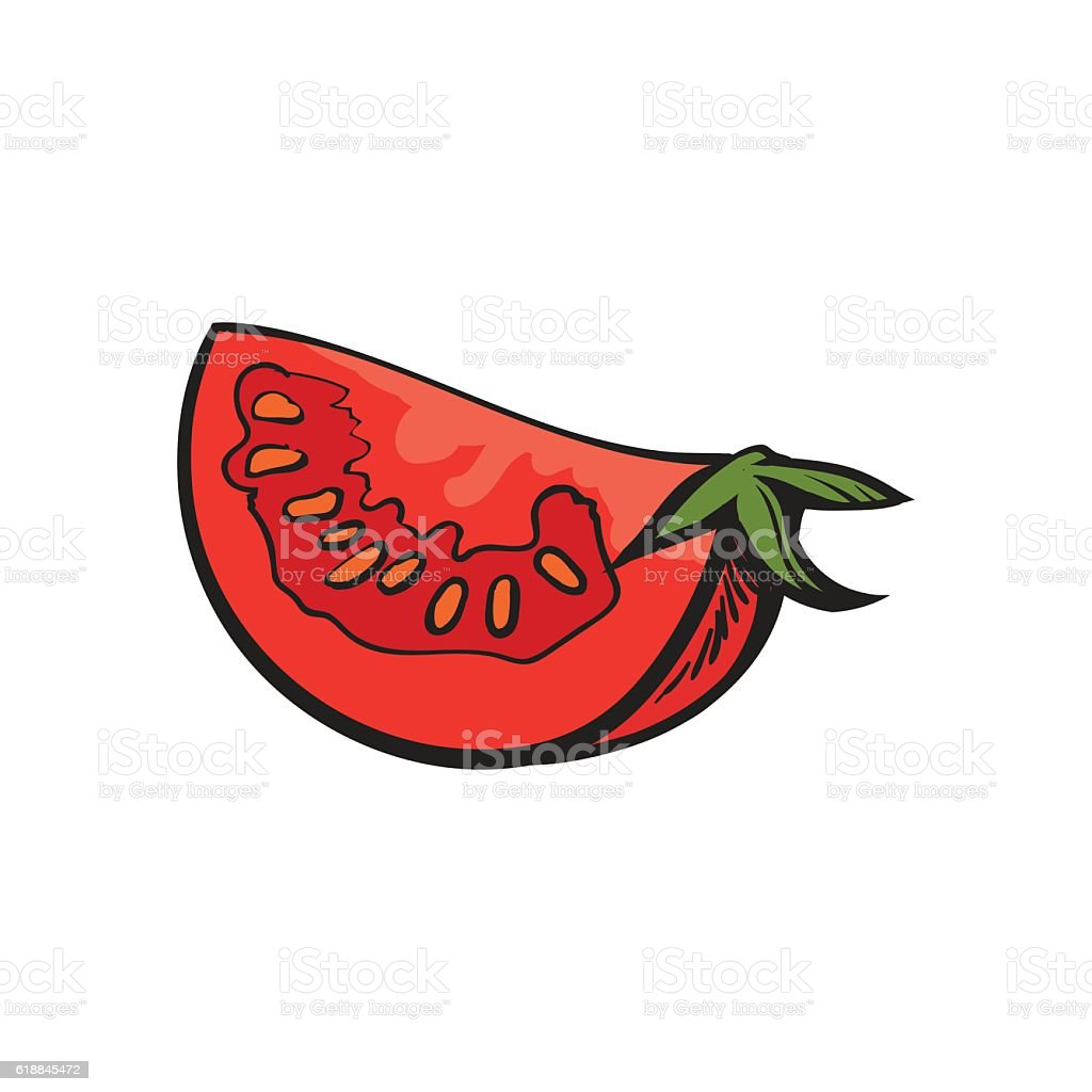 Sketch style drawing of ripe red tomato slice vector art illustration