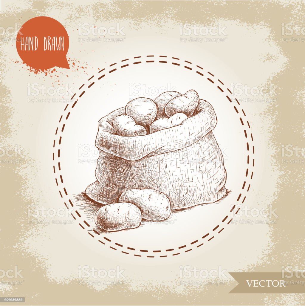 sketch style illustration of ripe potatoes in burlap bag vector art illustration