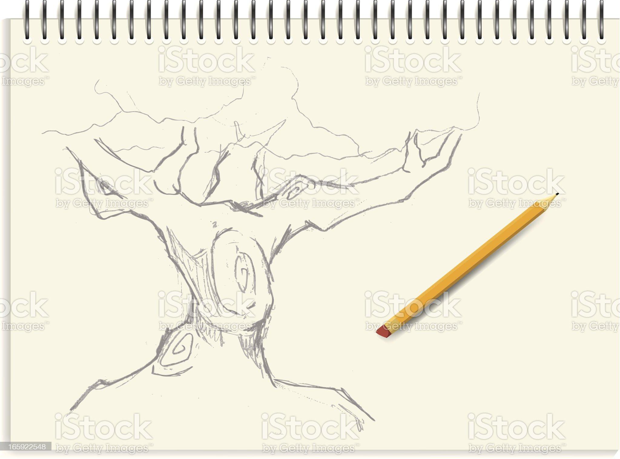 Sketch - Tree royalty-free stock vector art