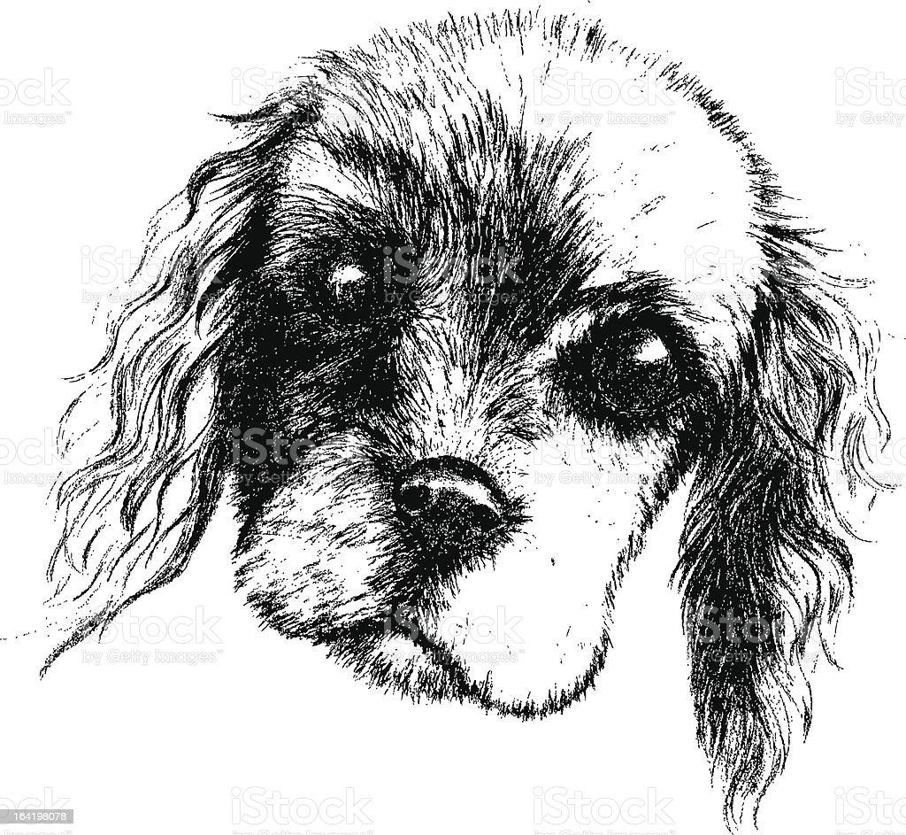 Sketching Dog royalty-free stock vector art