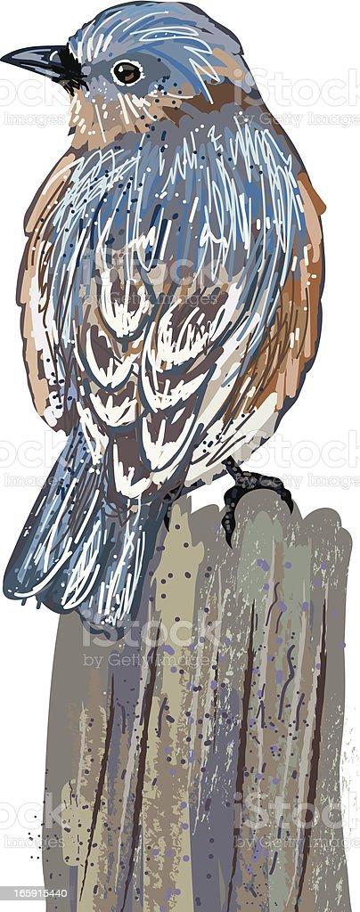 Sketchy Bluebird On Stump vector art illustration