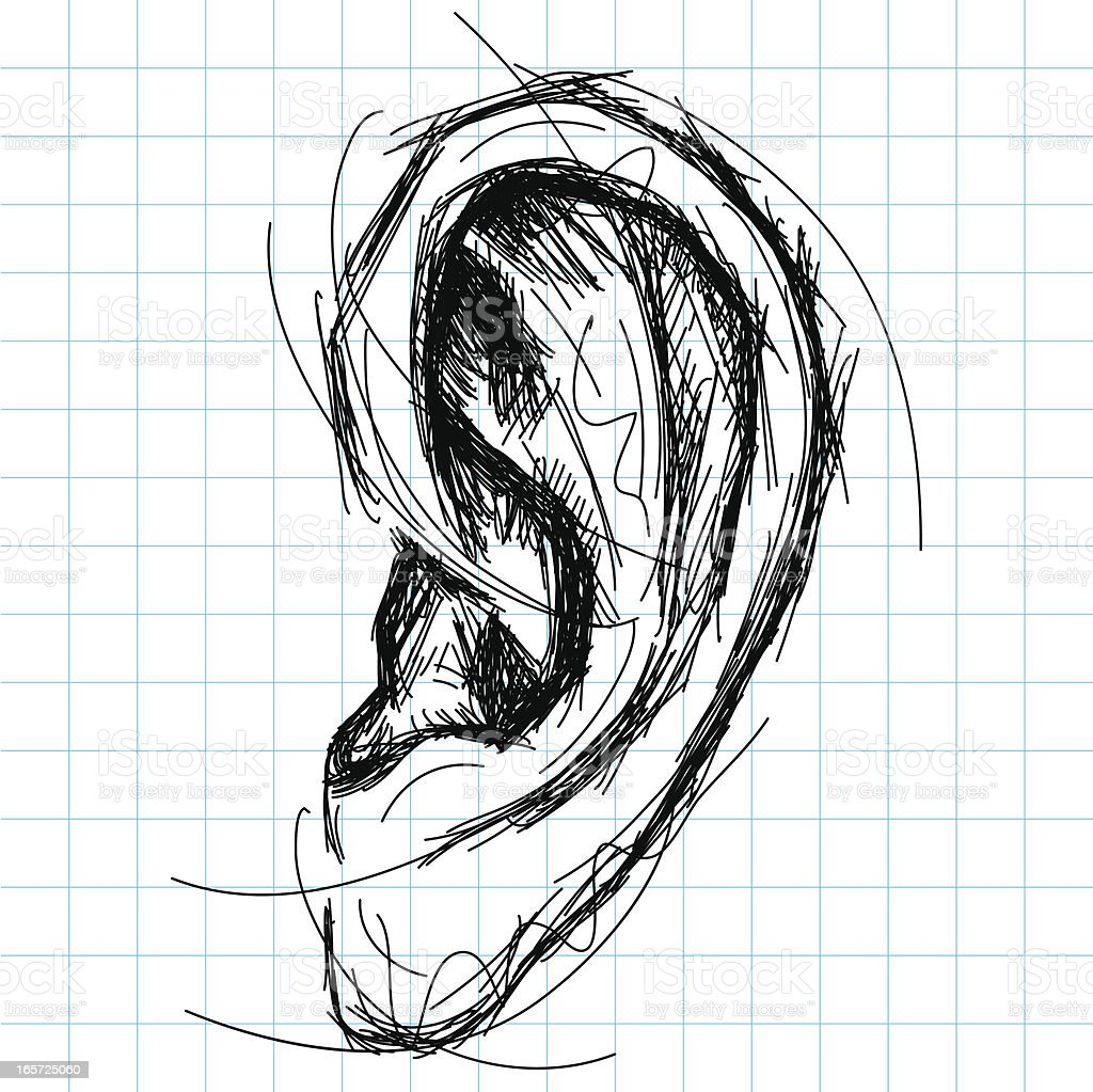 Sketchy, hand drawn human ear on grid paper. The artwork and paper...
