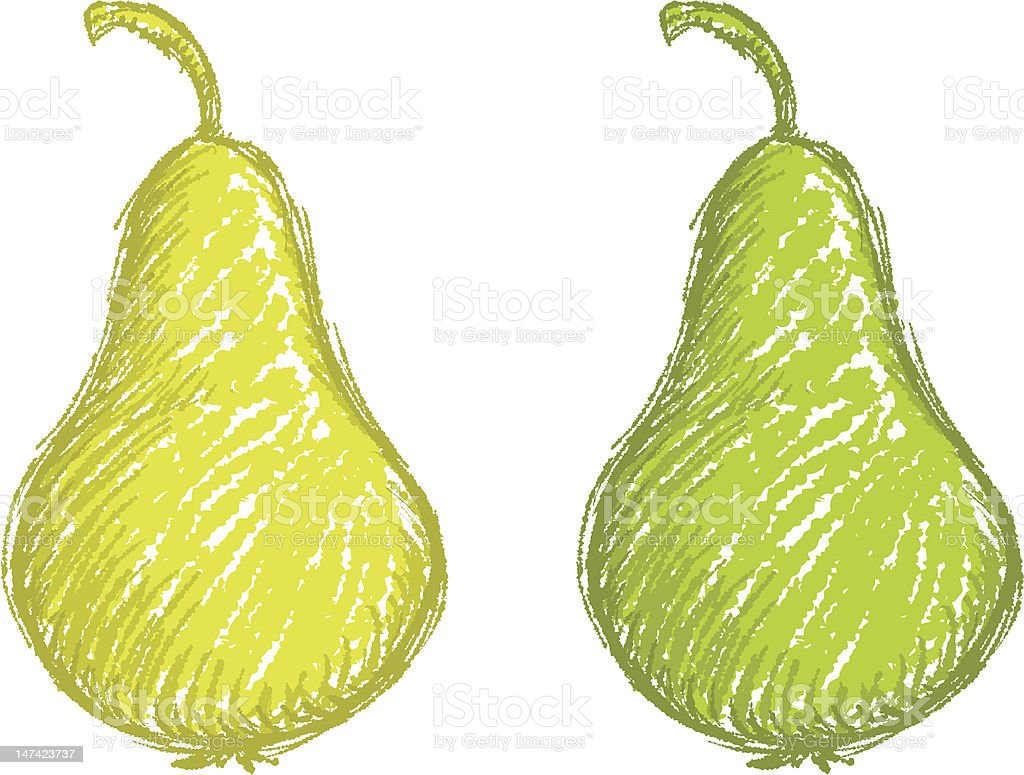 sketchy pear royalty-free stock vector art