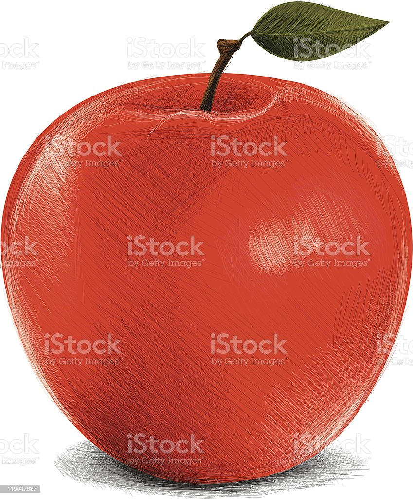 sketchy red apple royalty-free stock vector art