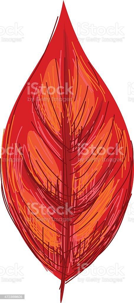 Sketchy Red leaf vector art illustration