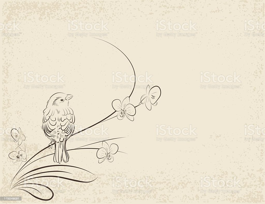 Sketchy Sparrow and Orchid royalty-free stock vector art