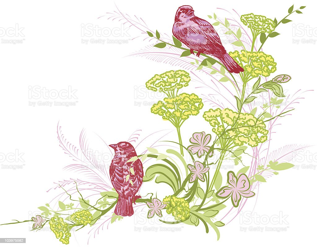 Sketchy Sparrows & Flowers royalty-free stock vector art