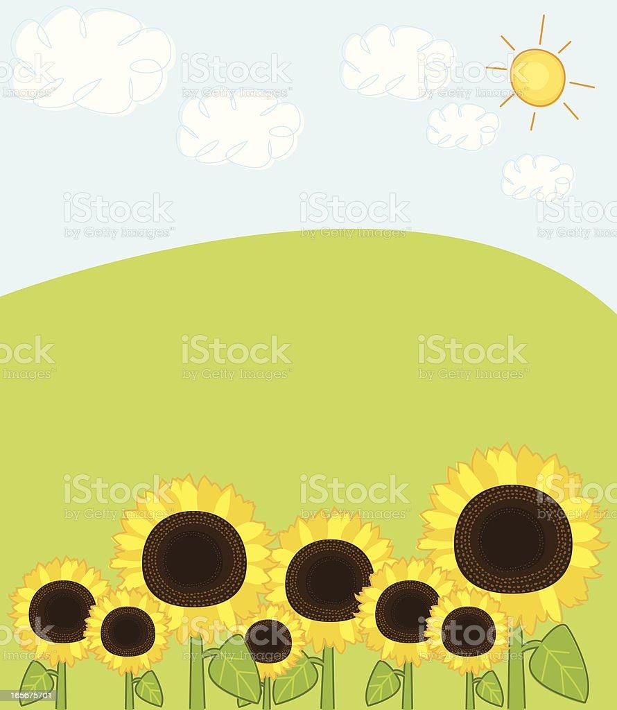 Sketchy Sunflower Field vector art illustration