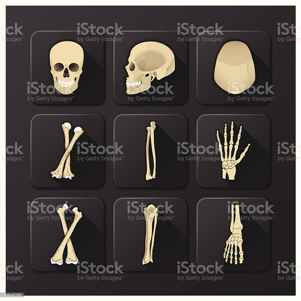 Skull And Bone Medical And Health Icon Set vector art illustration