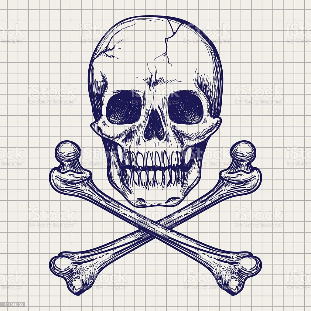 Skull and crossbones ball pen sketch vector art illustration