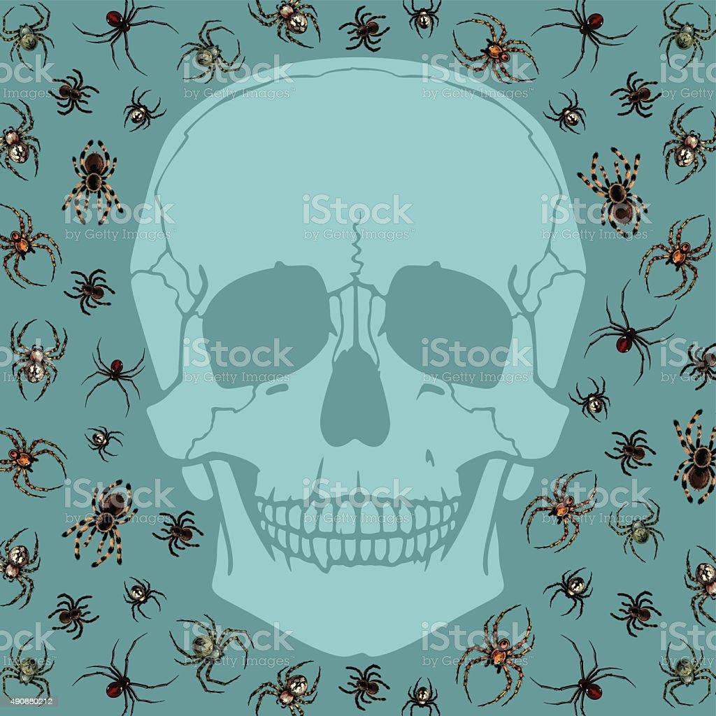 Skull and spiders vector art illustration