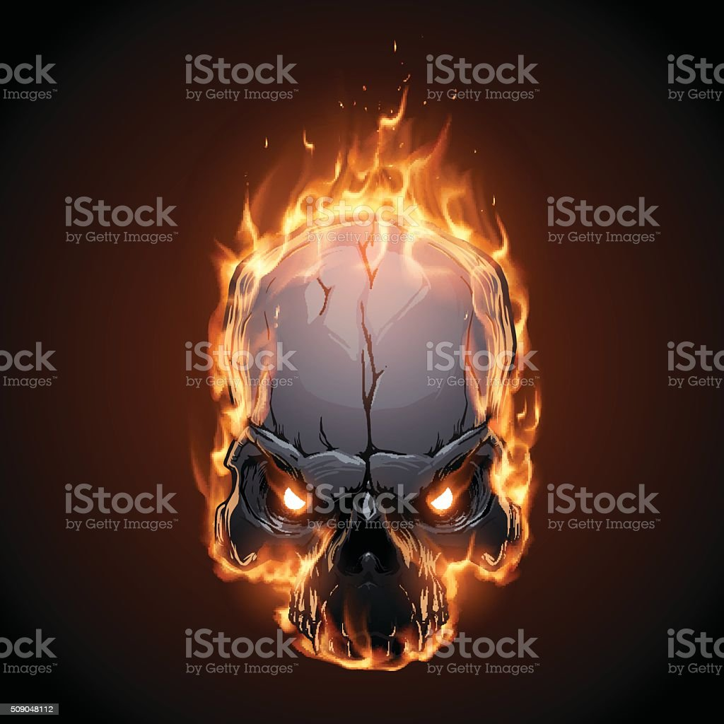 Skull in fire vector art illustration
