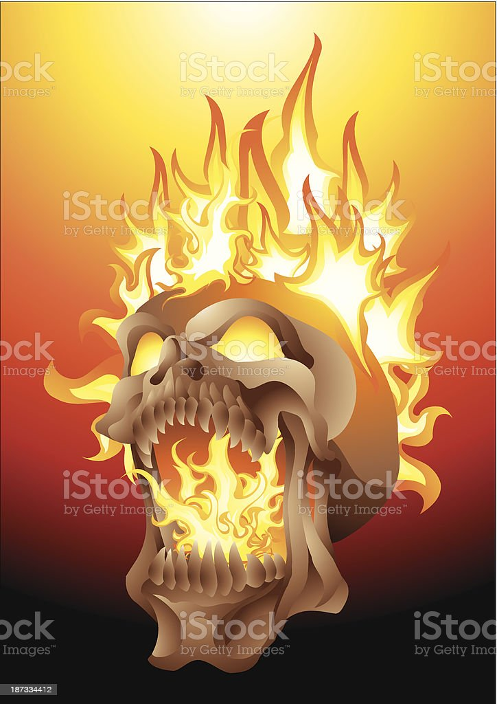 skull in flames royalty-free stock vector art