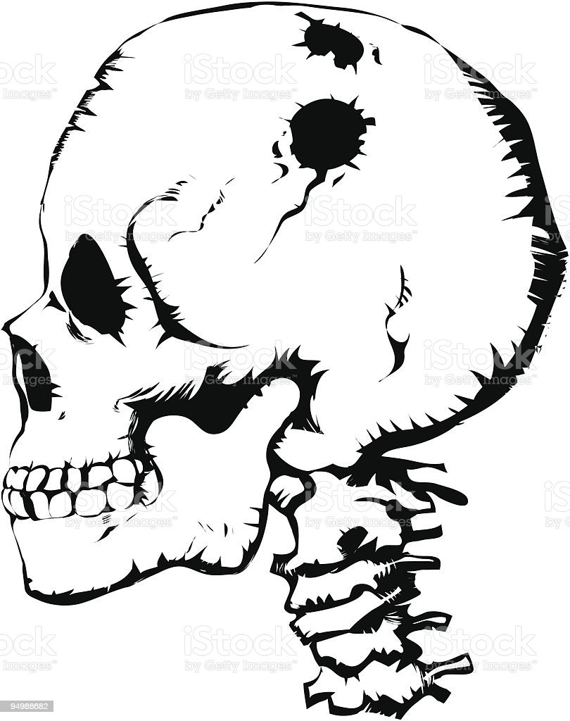 Skull royalty-free stock vector art